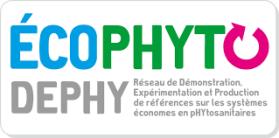 logo dephy